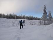 snowshoe-3