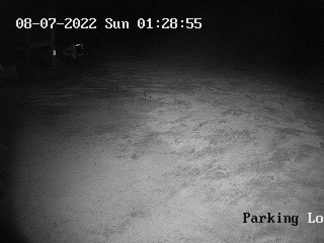 Larch Hills Parking Lot Webcam