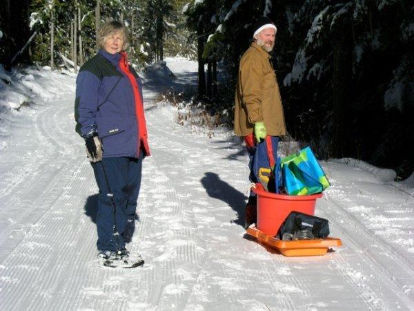 dog-trail-2
