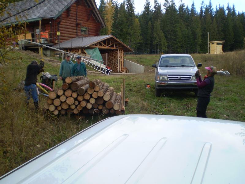 Fall wood gathering