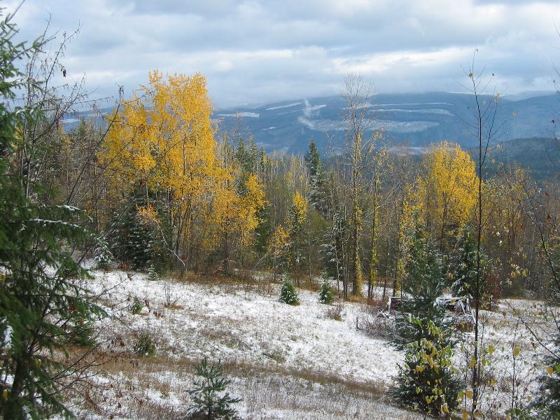 Larch Hills Cross Country Ski Area, Salmon Arm, BC