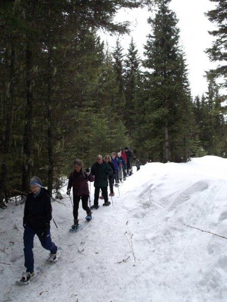 Snow Shoe tour