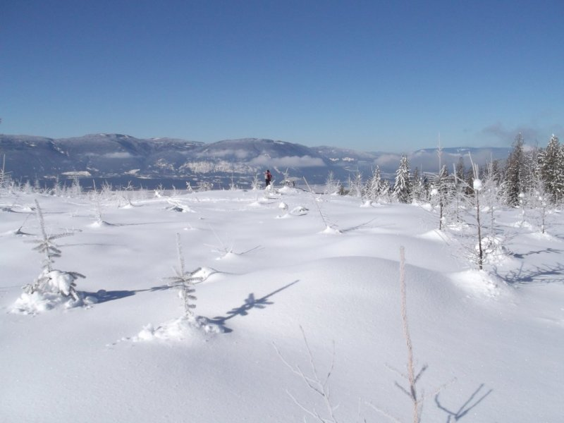 -16 To town View